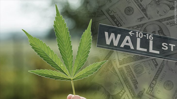 Wall Street experiments with investments in marijuana – THE INFO TODAY